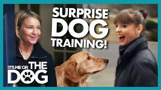 Dog Owner Gets Surprise Visit by Dog Behavior Expert Victoria Stilwell! | It's Me or The Dog
