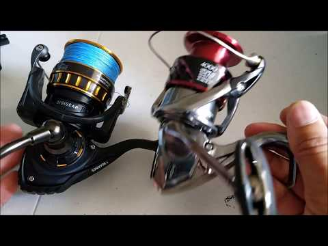 Spinning Reel Comparison:  Daiwa BG Vs Shimano Stradic
