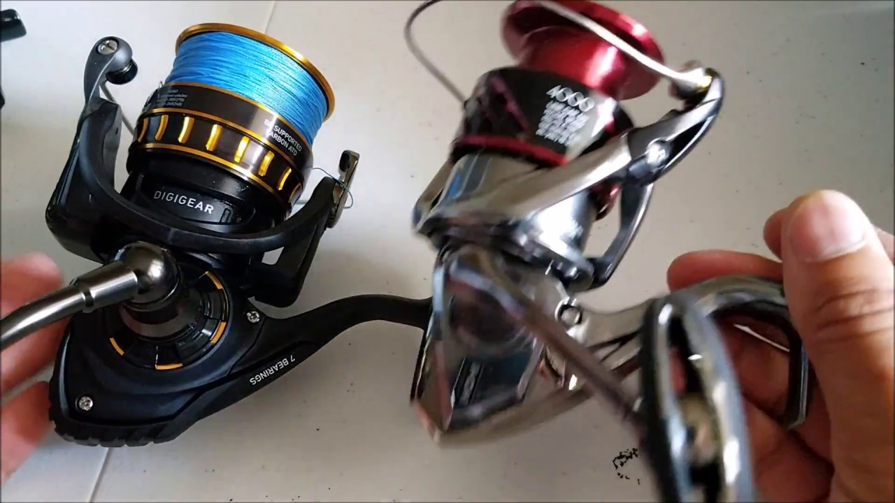 Spinning reel comparison: Daiwa BG vs Shimano Stradic