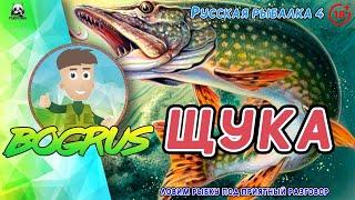 ЛОВИМ ЩУКУ Русская рыбалка 4 18