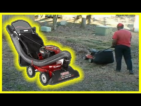 Craftsman Yard Vacuum in action - Cleaning up Leaves - Leaf Clean up