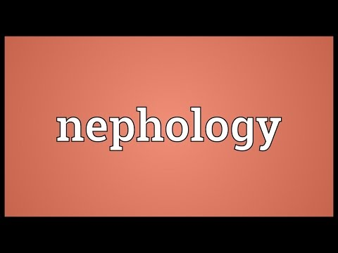 Header of nephology