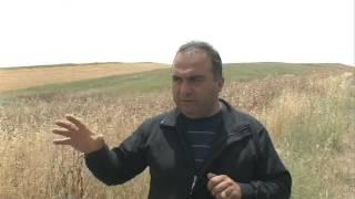 Վահան Բադասյանը՝ Քոչարյանի հարցազրույցի մասին