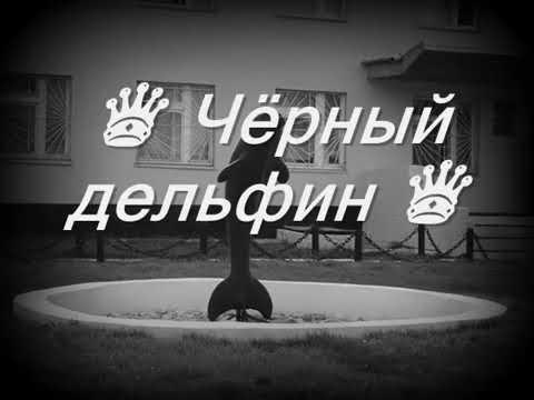 Черный Дельфин  текст песни Lyrics