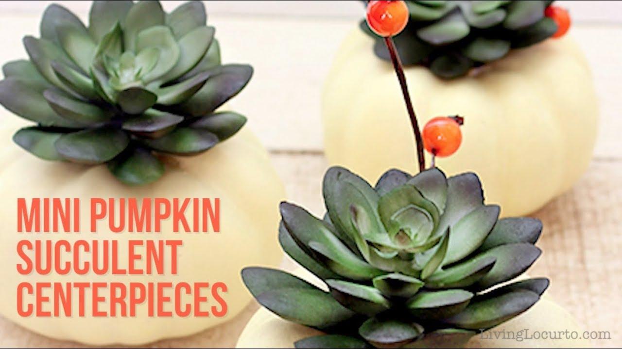 Thanksgiving Crafts | DIY Pumpkin Succulents Centerpiece - YouTube