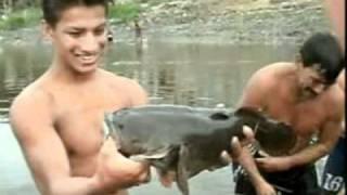 Documental - Los pescadores del rio Daule.flv