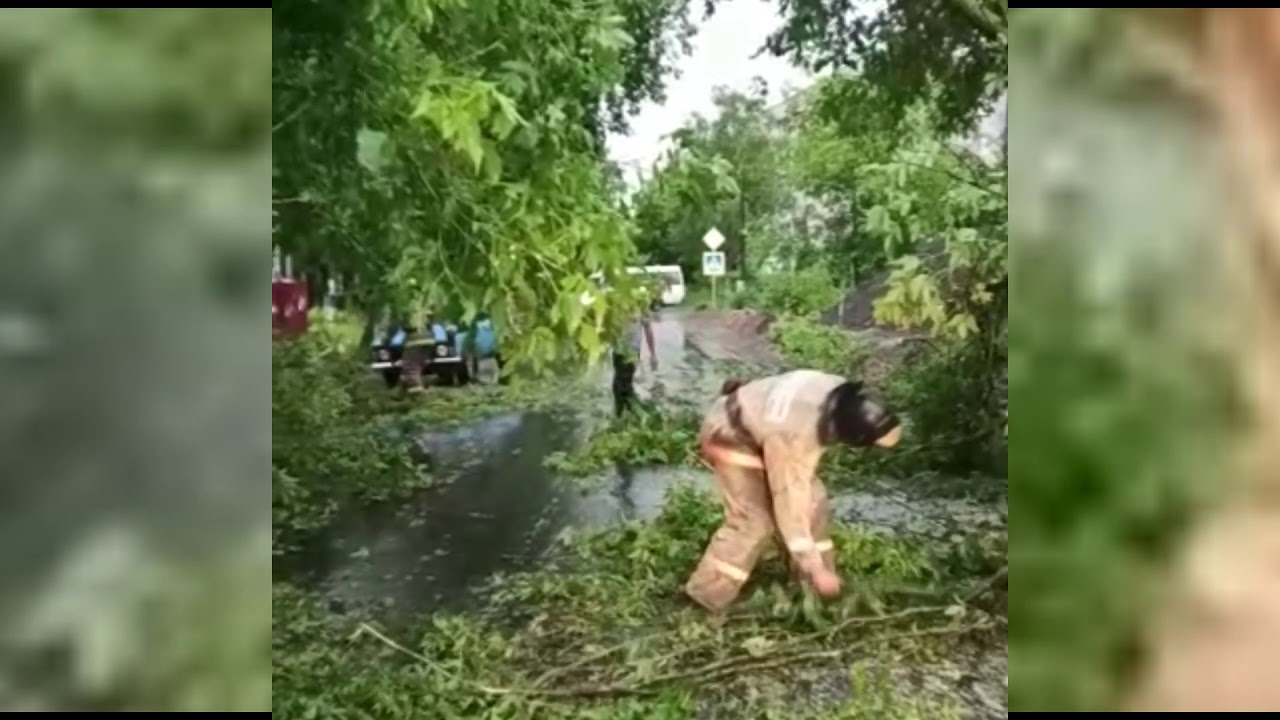 Уборка улиц после шторма в Твери