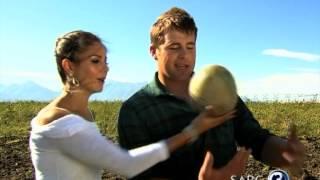 Blue Bull CJ Stander marries Jean-Marié Neethling