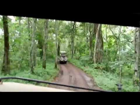 Driving through Arusha National Park, Tanzania