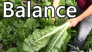 How We Garden: It's all about balance