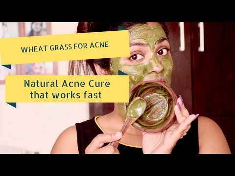 Natural Acne Cure That Works Fast - Wheat Grass Mask For Acne & Tan Wheat Grass Powder