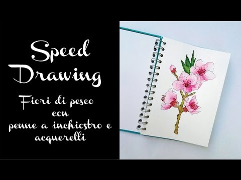 Speed Drawing Fiori Di Pesco Con Penne A Inchiostro E Acquerelli