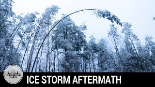 What Happened AFTER the Ice Storm? Off Grid Aftermath