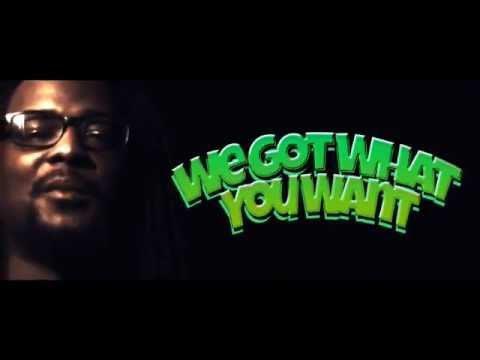 iWorkmusic - We Got What You Want [OFFICIAL VIDEO]