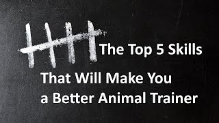 Скачать The Top 5 Skills That Will Make You A Better Animal Trainer