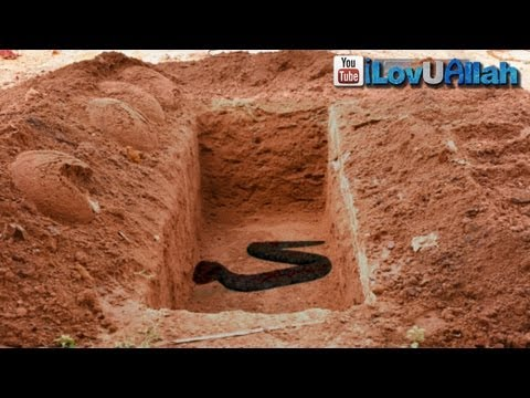 Snake In The Grave ᴴᴰ | *True Story*
