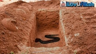 Repeat youtube video Snake In The Grave ᴴᴰ | *True Story*