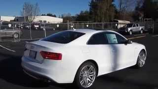 2015 Audi S5, Ibis White - Stock# 110177 - Walk Around