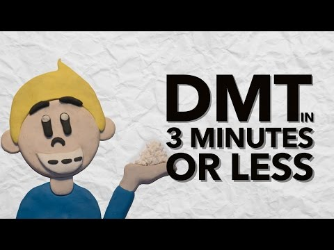 The History of DMT in 3 Minutes
