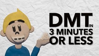 L'Histoire de la DMT dans 3 Minutes
