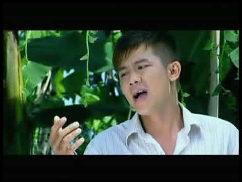 Mồng Tơi - Vân Quang Long