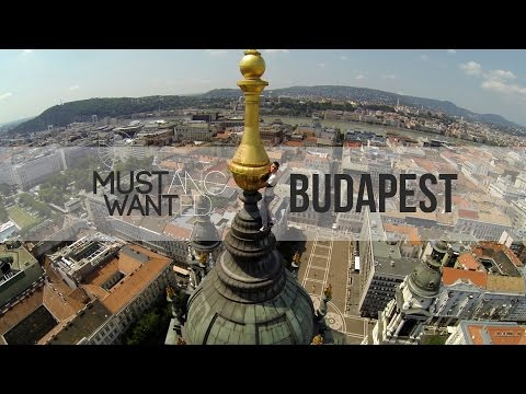 Mustang Wanted on the top of Budapest