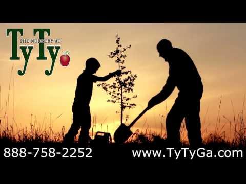 #Texas* Fruit Trees* +Grape, Berry & Shade+Fast Growing Tree+