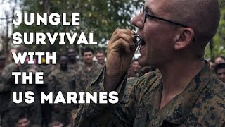 Eating Insects in Thailand - US Marines Learn Jungle Survival Skills From The Royal Thai Marines