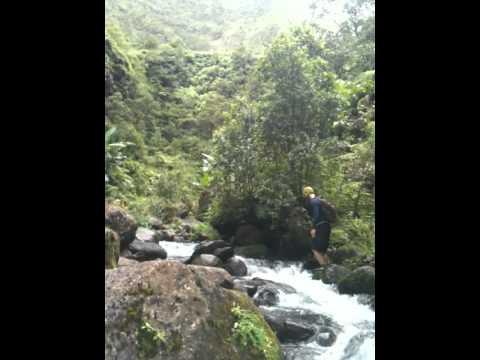 Swimming Holes with Waterfalls - Waialeale Hike Kauai.MOV