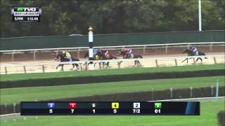 RACE REPLAY: 2015 Jockey Club Gold Cup at Belmont Park