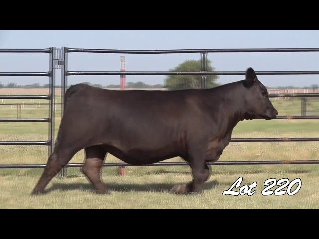 Pollard Farms Lot 220