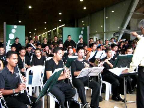 Medellin Gran banda marzo 20 de 2011 culpables