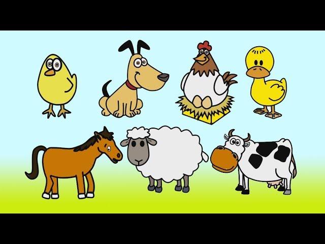رسم وتلوين حيوانات المزرعة تلوين حيوانات رسم حيوانات للاطفال رائع تعلم الرسم والتلوين Youtube