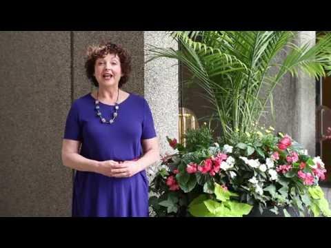 Linda Barnard Endorses the Inaugural Toronto Carnival Run