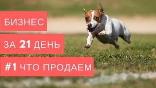 1. Что продаем. Курс   Бизнес за 21 день. Алексей Черняк