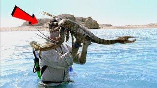 Uomo cattura questa creatura gigantesca in un fiume! Vero o Falso?
