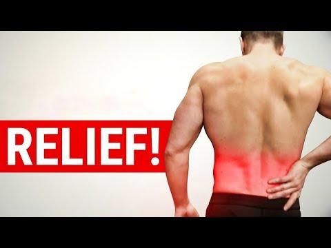 Lumbar Support Self Heated Magnetic Back Brace
