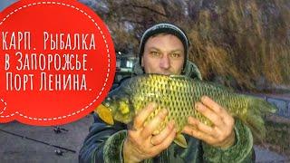 КАРП Рыбалка в Запорожье Порт Ленина
