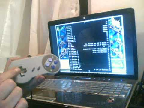 Programming a USB controller for playing Arcade Classics on windows