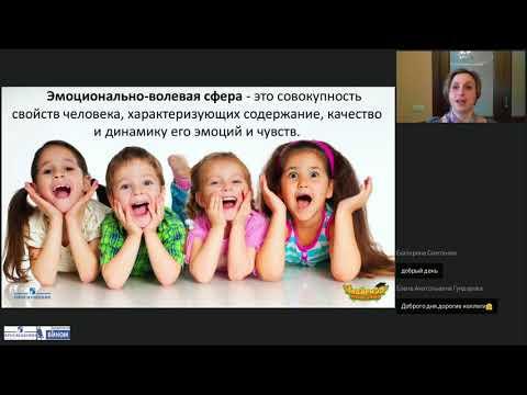 Особенности развития эмоционально-волевой сферы ребенка