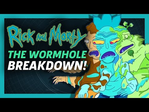 Rick and Morty Season 3 Episode 5 - Wormhole Scene Breakdown & References!