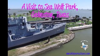 A Visit to Seawolf Park!
