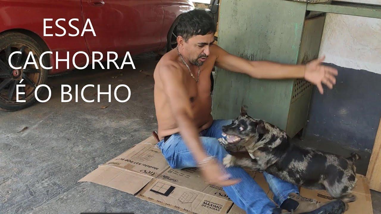 COMPANHEIRA É COMPANHEIRA TEKA ESPOLETA OIA OQUE ELA FAZ.