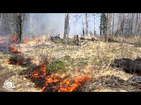 Banff National Park: Earth, Air, Prescribed Fire and Water - A month with the classical elements