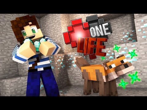 My Fox Can Hunt Diamonds! - One Life...