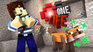 My Fox Can Hunt Diamonds! - One Life Minecraft SMP | Ep.2