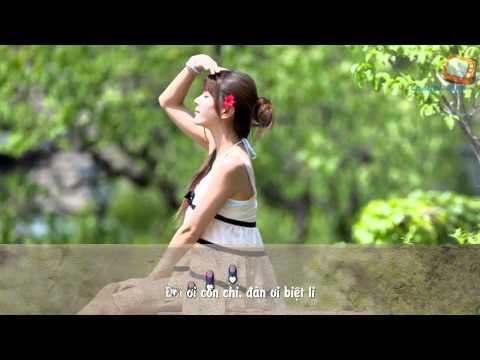 Karaoke Effect | Đập Vỡ Cây Đàn | Quang Lê | [Lyric]