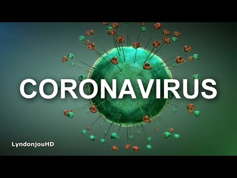 Qué Es El Coronavirus? | Causas Y Síntomas