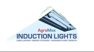 AgroMax Induction Grow Lights for Plants, Best Quality Lowest Prices Induction Grow Light 400 watt