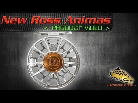 New 2019 Ross Animas Fly Reel Video